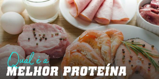 Qual é a melhor proteína?