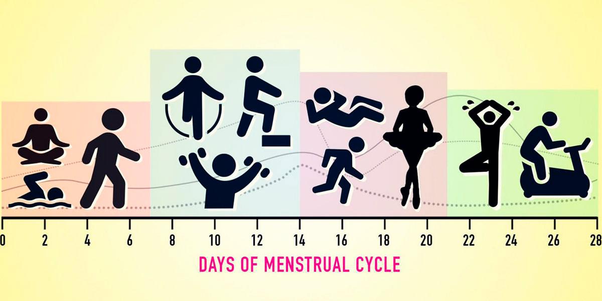 Treino ciclo menstrual