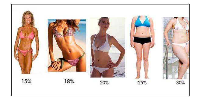 percentagem gordura
