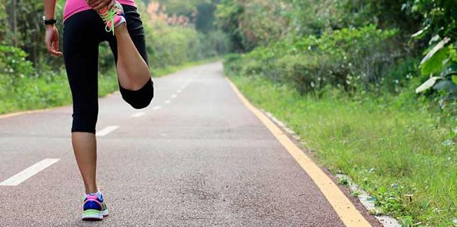 Pycnogenol e exercício
