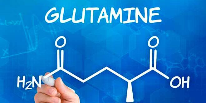 Como tomar glutamina?