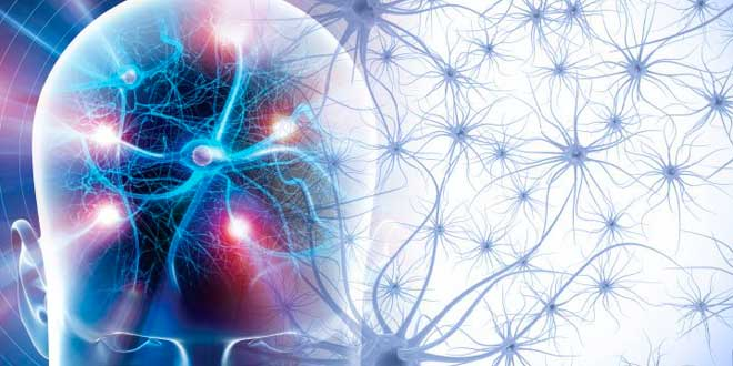 Efeitos neurotransmissores