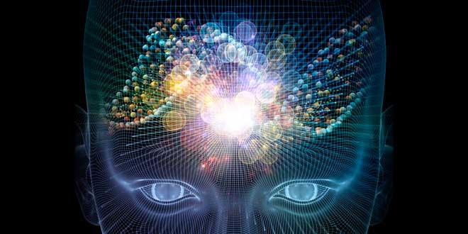 Nootrópicos cerebro
