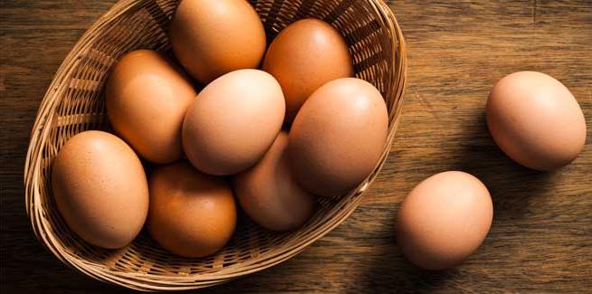 ovos com casca