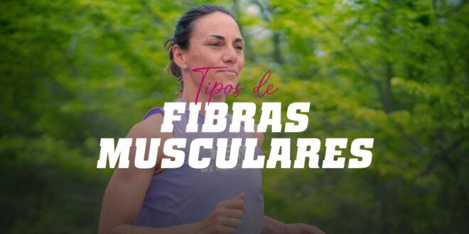 Tipos de fibras musculares e a sua relação com o desporto