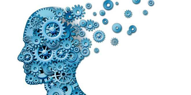 Fosfatidilserina, conhece as suas propriedades e ajuda às funções cerebrais