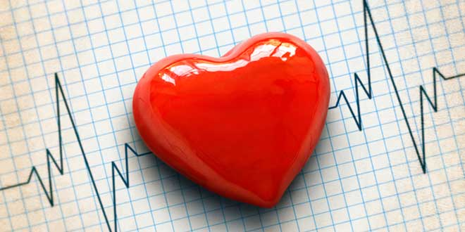 potasio latidos coração