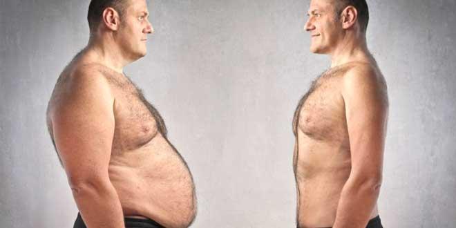 mudanças corporais metabolismo
