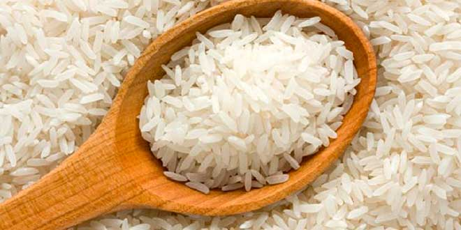 proteína do arroz