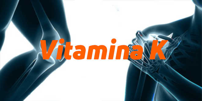 Vitamina K – Tudo o que deves saber!