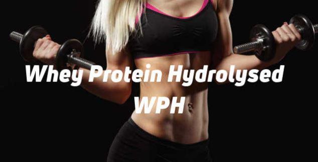 Hydrolysed Whey Protein ou Proteínas Hidrolisadas de Soro