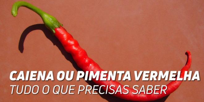 Caiena ou Pimenta Vermelha – Tudo o que deves saber!