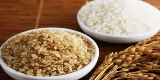 Proteínas de Arroz – Uma fonte de aminoácidos para cuidar o teu peso