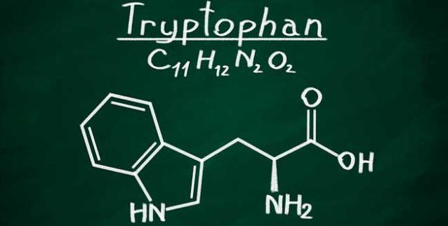 Triptófano – Tudo o que deves saber!