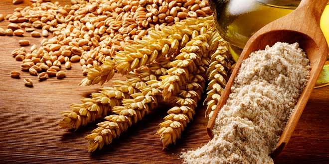 grãos inteiros