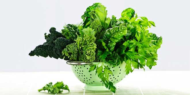 verduras de folha verde