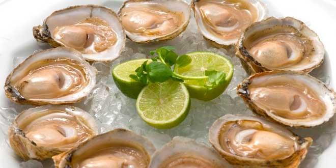 ostras e cálcio
