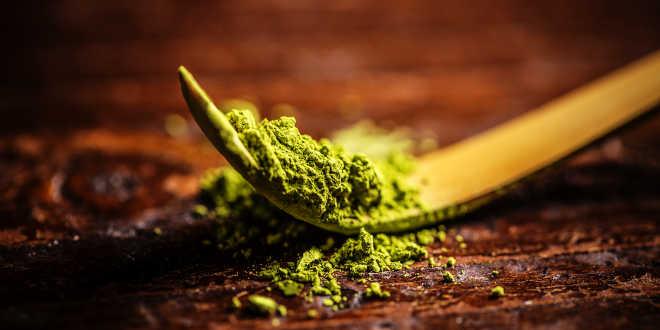 Chá Matcha – Uma bebida natural com altas propriedades antioxidantes