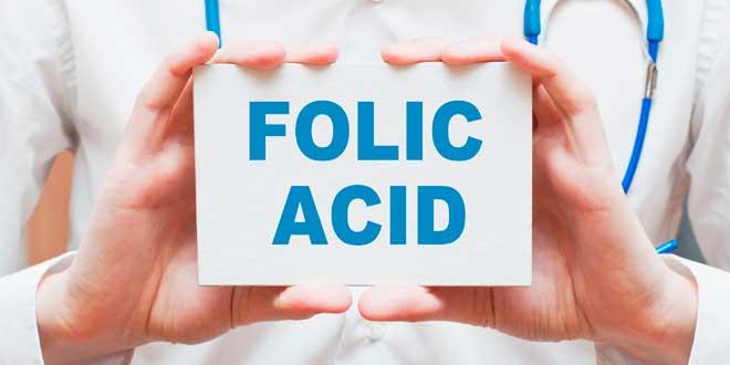 funções ácido fólico