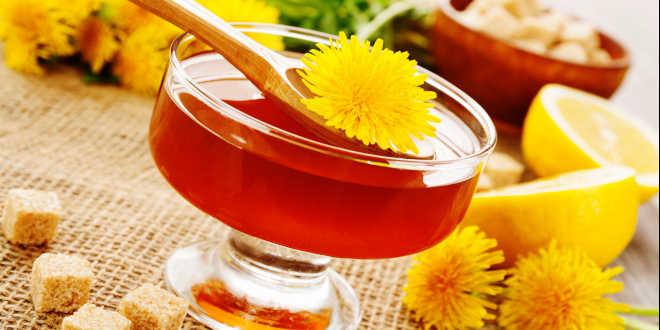 dente-de-leão infusão chá