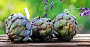 propriedades alcachofra para a dieta