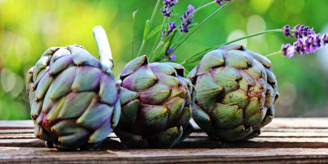 Alcachofra e seu uso especial nas dietas de emagrecimento