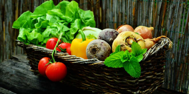 Betacaroteno – Fonte de riqueza natural de vitamina A para o organismo