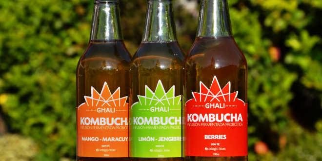 kombucha bebidas