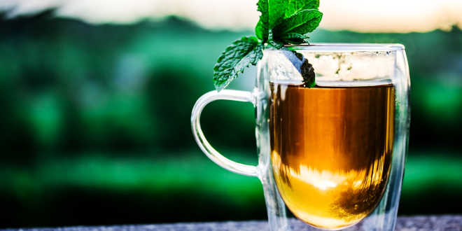 chá fonte quercetina