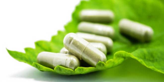 capsulas veganas vegetarianas