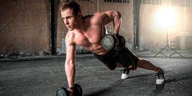 creatina testosterona