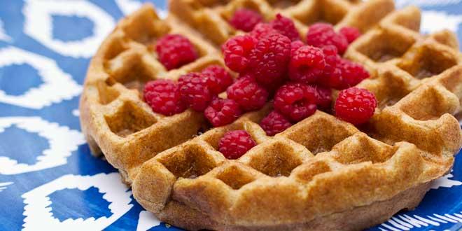Waffles Proteico