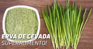 Erva Cevada