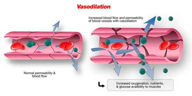 vasodilatação