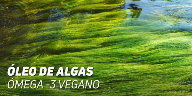 Óleo de Algas: Ómega 3 Vegano