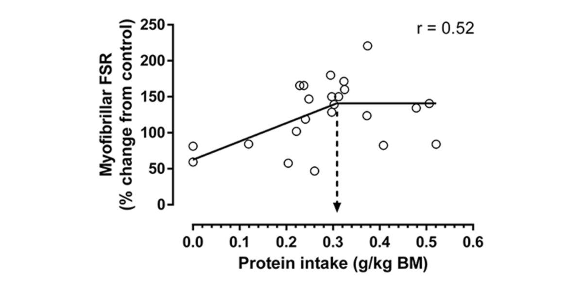 Consumo proteinas