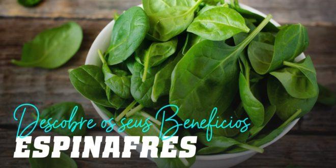 Espinafres: Descobre todos os seus Benefícios
