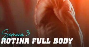 Rotina full body semana 3