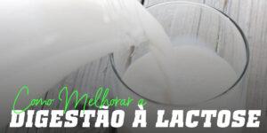 Como melhoar a digestão a lactose
