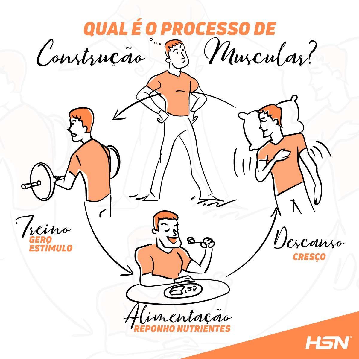 Construçao muscular