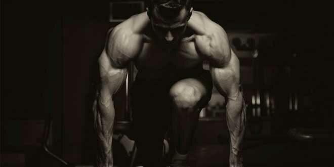 Como Ganhar Massa Muscular?