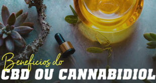 Beneficios do cbd ou cannabidiol