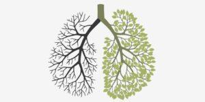 Suplementos fumadores