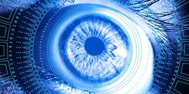 Zeaxantina e a visão