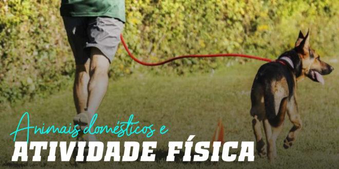 Animais de estimação e atividade física: uma relação excelente!