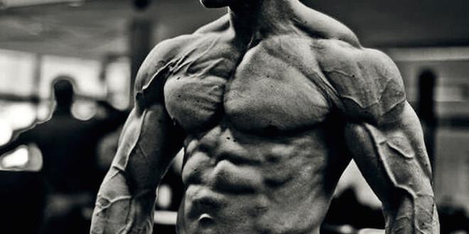 Hipertrofia força