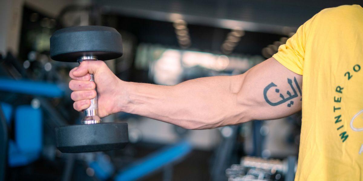 Conexão Mente-Músculo