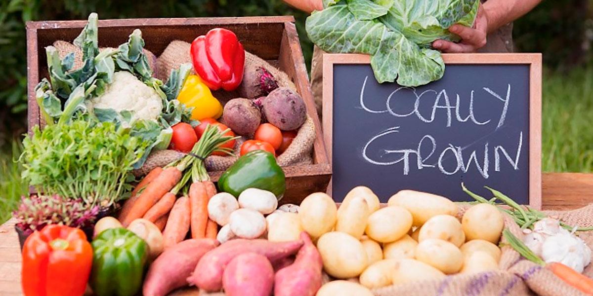 Produtos locais - alimentos eco e bio