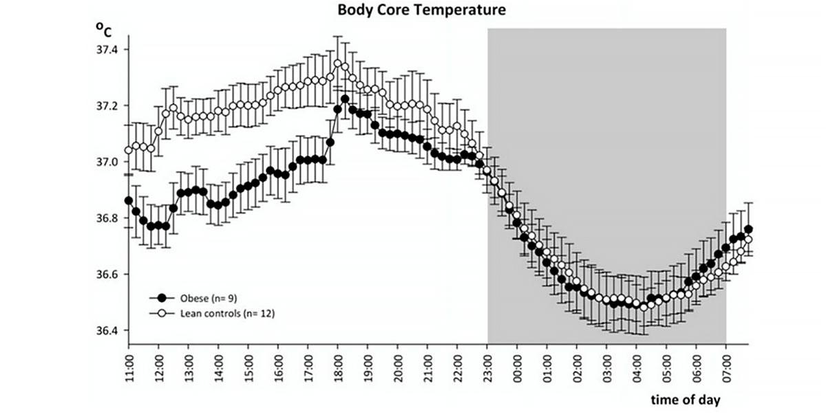 Flutuação da temperatura corporal
