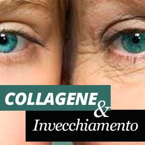 Collagene ed invecchiamento
